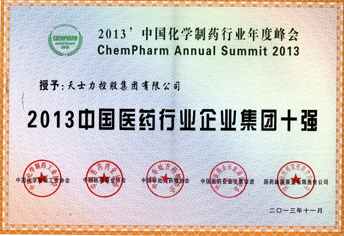 2013 China Top 10 Pharmaceutical Groups